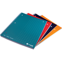 Livescribe Dot Matrix College-Ruled Notebooks
