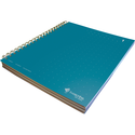 Livescribe Dot Matrix 3-Subject Lined Notebook